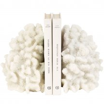 Bookend Coral